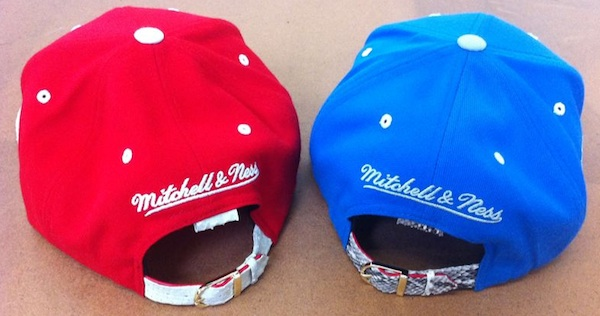 51653ba9332 Mitchell-Ness-Detroit-RedWings-Detroit-Lions-Snakeskin-Snapback-Hat ...